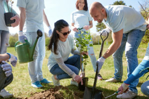 Volunteers helping to plant a tree for Earth Day